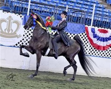 Macey Miles and Harlem's Wild and Wonderful Earn Triple