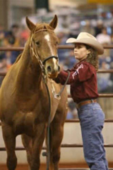 Westfall Wins 2006 Road to the Horse - Expert advice on